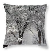 Winter 0002 Throw Pillow