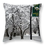 Winter 0003 Throw Pillow