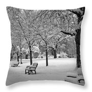Winter 0004 Throw Pillow