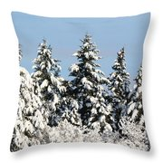 Winter 0005 Throw Pillow