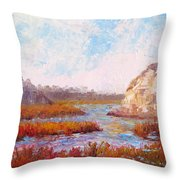 Winter At The Back Bay Throw Pillow