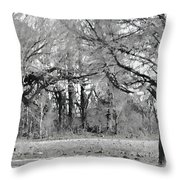 Winter At The Edge Of The Woods Throw Pillow