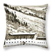 Winter Barn 1 Throw Pillow