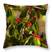 Winter Bird Treet Throw Pillow