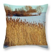 Winter Breeze Throw Pillow by Aimee L Maher Photography and Art Visit ALMGallerydotcom