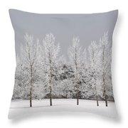 Winter, Calgary, Alberta, Canada Throw Pillow