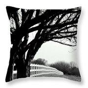 Winter Cherry Throw Pillow