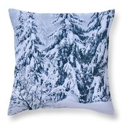 Winter Coat Throw Pillow by Aimelle