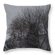 Winter Cold Branches Throw Pillow