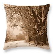 Winter Country Road Throw Pillow
