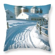 Winter, Ct Throw Pillow