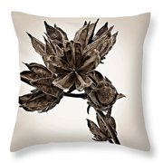 Winter Dormant Rose Of Sharon - S Throw Pillow