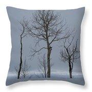 Winter Elegance Too Throw Pillow