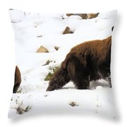 Winter Guide Throw Pillow