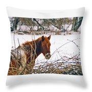 Winter Horse Landscape Throw Pillow