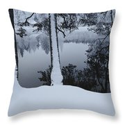 Winter In The Countryside  Bold Tree Throw Pillow