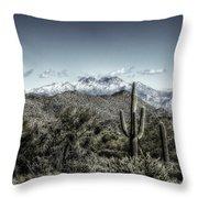 Winter In The Desert Throw Pillow