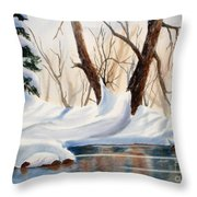 Winter In The Valley Throw Pillow