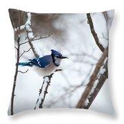 Winter Jay Throw Pillow