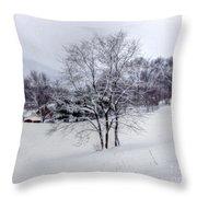 Winter Landscape 6 Throw Pillow