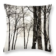 Winter Landscape On Snowy Day Throw Pillow