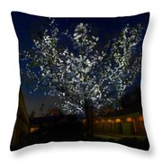 Winter Lights Throw Pillow