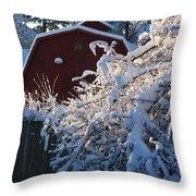 Winter Look Throw Pillow