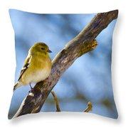 Winter Morning Song Bird Throw Pillow