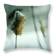 Winter Music Throw Pillow