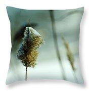Winter Music Throw Pillow