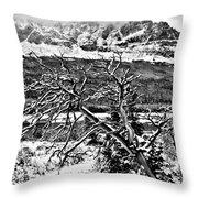 Winter On The Horizon Throw Pillow