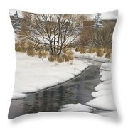Winter River Throw Pillow