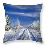Winter Rural Road Throw Pillow