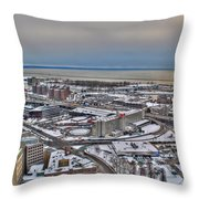 Winter Scene Land And Water Throw Pillow