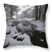 Winter Scene Of Creek With Snow-covered Throw Pillow