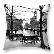 Winter Setting Sun Throw Pillow