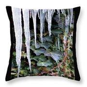 Winter Still Throw Pillow