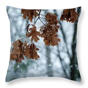 Winter Takes Hold Throw Pillow