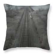 Winter Tracks  Throw Pillow