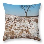 Winter Tree Nachusa Grasslands Throw Pillow