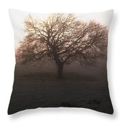 Winter Tree On A Frosty Morning, County Throw Pillow