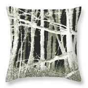 Winter Trees With Chalk Throw Pillow