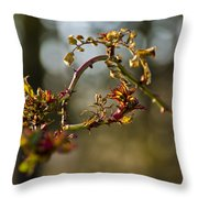 Winter Wild Rose Heart Throw Pillow
