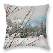 Winter Woods Throw Pillow by Joann Vitali
