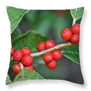 Winterberry Throw Pillow