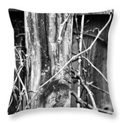 Wintered And Weathered Throw Pillow