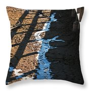 Winters Approach Throw Pillow