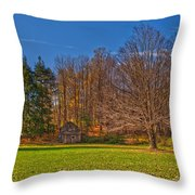 Winters Coming Throw Pillow