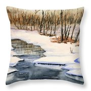 Winters Delight Throw Pillow