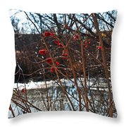 Winters Food Store Throw Pillow
